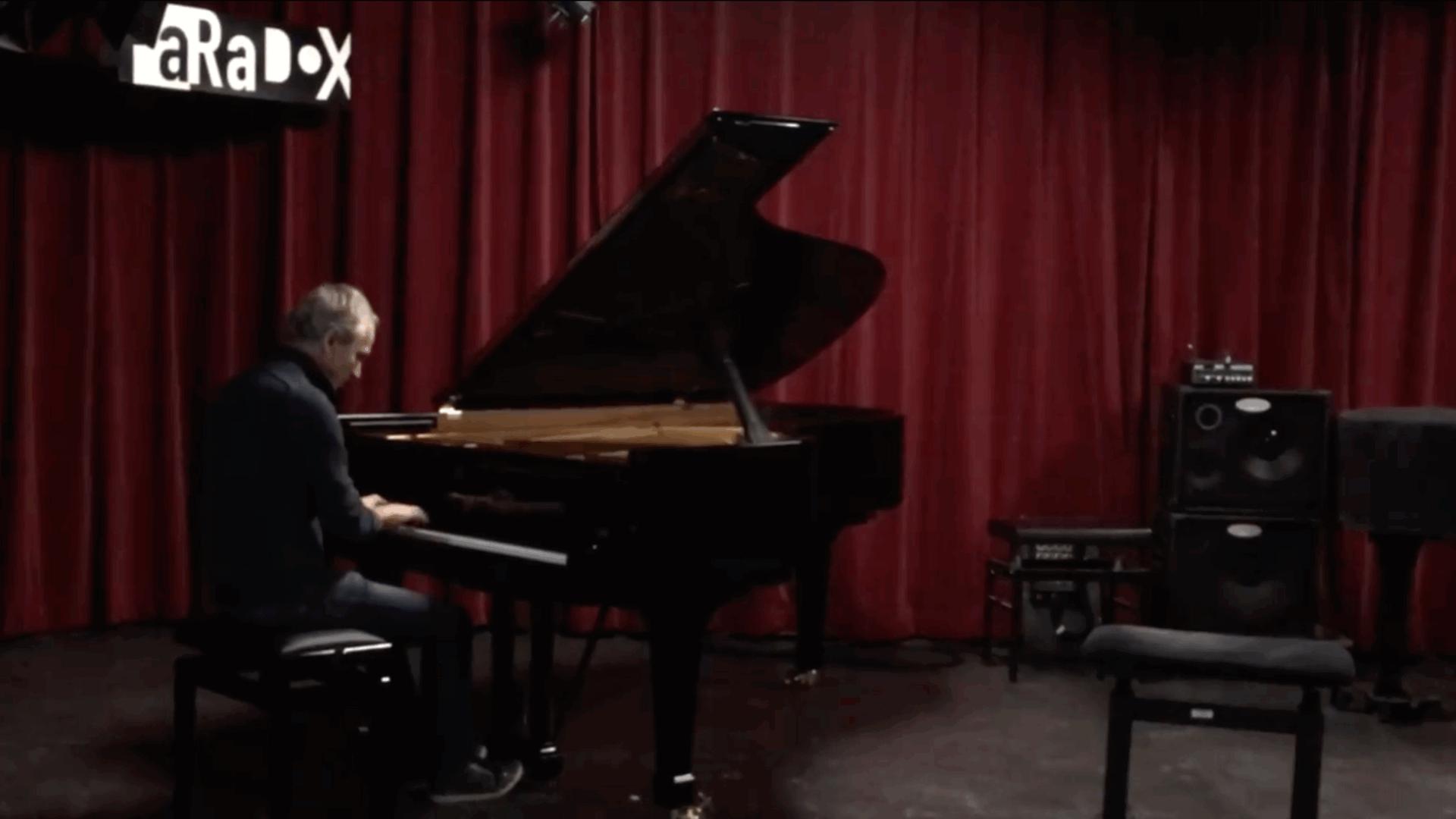 Concertvleugel voor Paradox