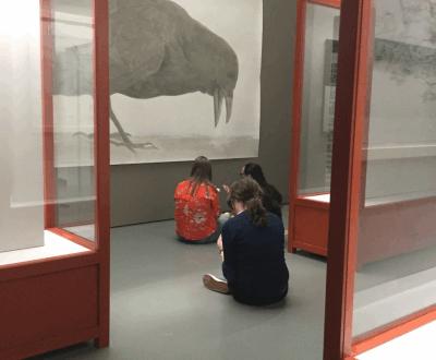 Ontmoeting met de kunsten